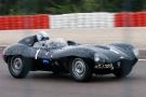 1 Jaguar Type D